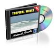 Thumbnail Natural Sounds: Tropical Waves - Royalty Free MP3