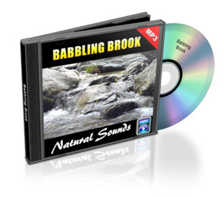 Product picture Natural Sounds: Babbling Brook - Royalty Free MP3