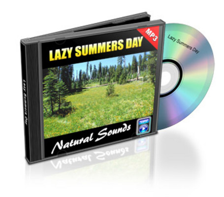 Product picture Natural Sounds: Lazy Summer Day - Royalty Free MP3
