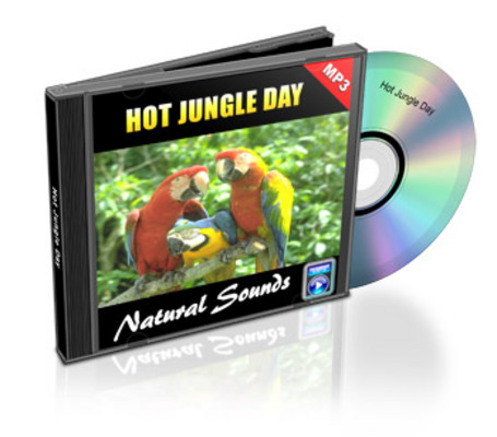 Product picture Natural Sounds: Hot Jungle Day - Royalty Free MP3